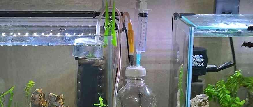 CO2 для нано-аквариумов