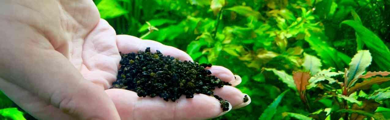 Сравнение грунта и внешника по эффективности биофильтрации