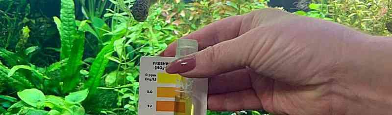 Дозировка удобрений в аквариум. Как правильно рассчитать?