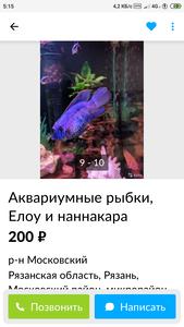 Screenshot 2021 01 12 05 15 56 842 com.avito.android